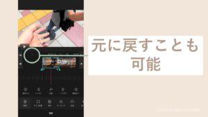 iPhoneのVLLOで動画を元に戻す画面